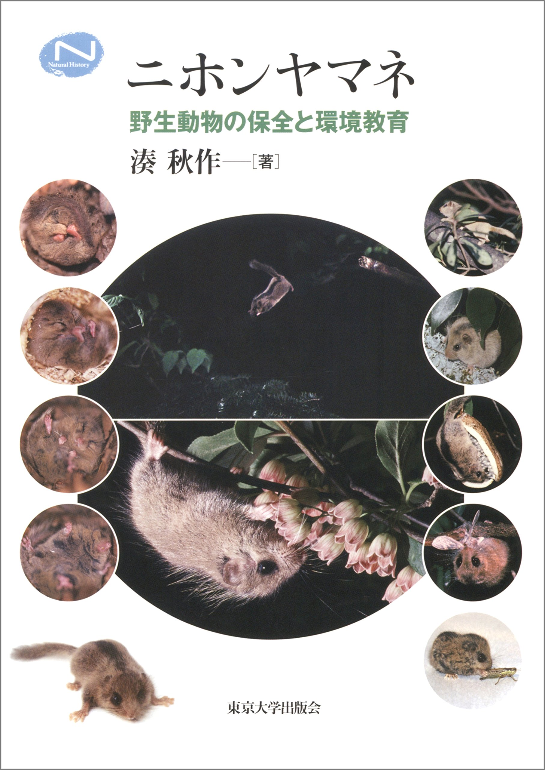 Japanese Dormouse - Conservation of Wild Animals and Environmental Education - (The University of Tokyo Press)